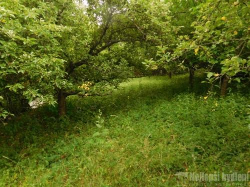 Pozemky na prodej: Zahrada 517 m2, Brno-Bystrc