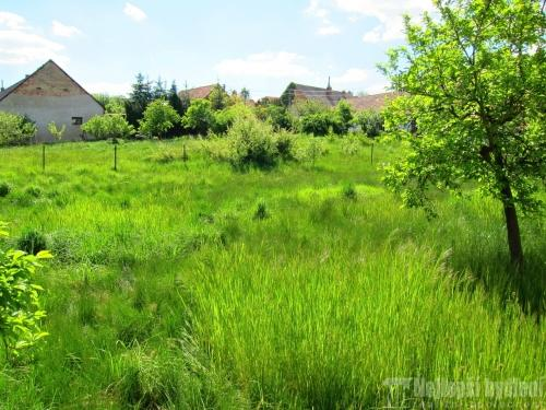 Pozemky na prodej: SP 1100m2, Zbraslav