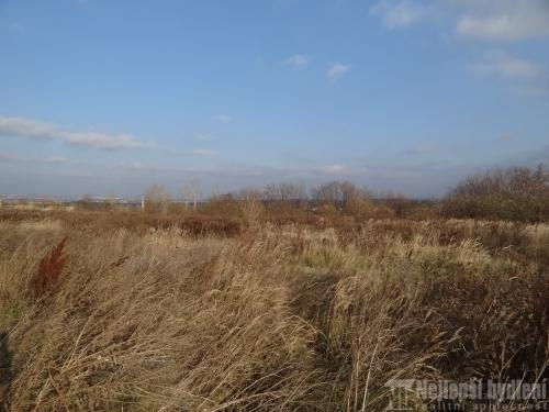 Pozemky na prodej: SP 774m2, Modřice