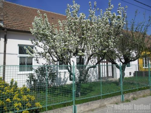 Domy na prodej: RD 4+1 se dvorem a zahradou, Hrušovany u Brna, 911 m2