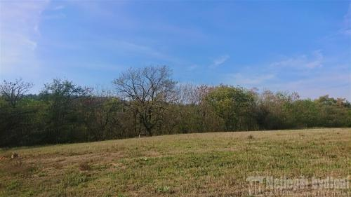 Nemovitosti na prodej: Pozemek 1250m2 Mokrá-Horákov