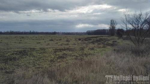 Zemědělský pozemek 2.841m2, Borek - Borecká Tůň