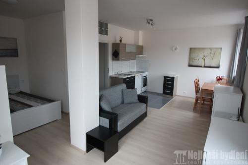 Nabízíme k pronájmu nový, pěkný byt 1+kk s terasou v Brně – Žabovřesky .